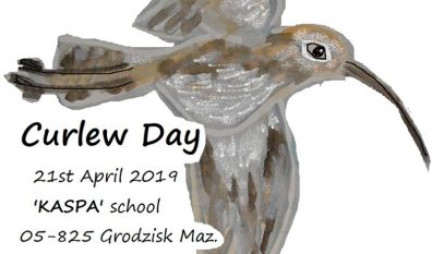 World Curlew Day